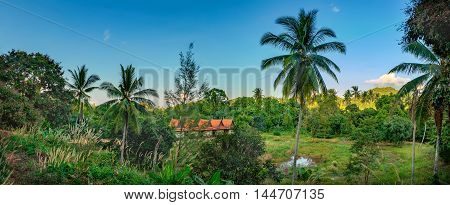 Small house with the red roof in the jungle Koh Chang Thailand. Panorama of country landscape with Thai wooden cottage in forest