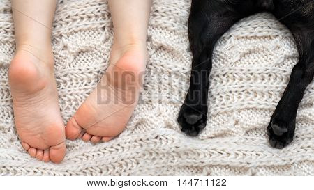 Stunning heels of the child and the dog. The symbol of tenderness trust comfort and coziness