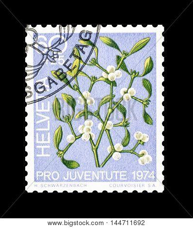 SWITZERLAND - CIRCA 1974 : Cancelled postage stamp printed by Switzerland, that shows European mistletoe.