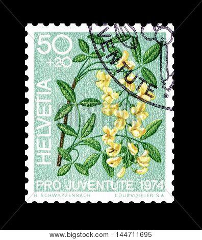 SWITZERLAND - CIRCA 1974 : Cancelled postage stamp printed by Switzerland, that shows Golden rain.