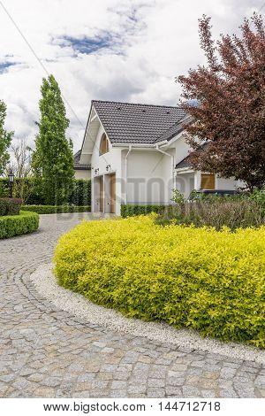 House Stone Pathway