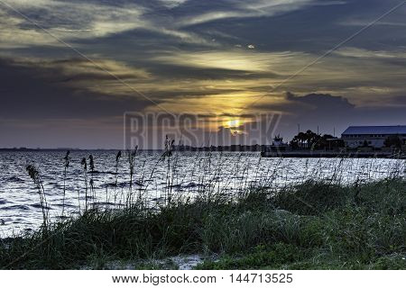 Seascape of seagrass and water at sunset
