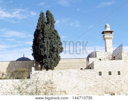 Jerusalem Israel - December 2 2012: Cypress on the roof of Al-Aqsa Mosque.