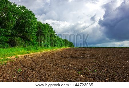 Agriculture. prepared the field for planting with clouds on the horizon .