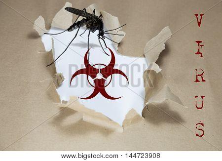 IKA Virus written under torn Brown paper