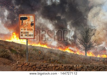 forest fire and a warning sign that informs about the danger of cigarettes in the nature