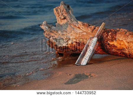 New Year message in a bottle for 2017 on driftwood log on a beach in sand