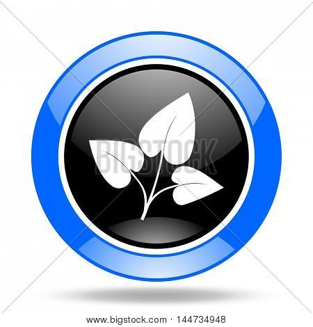 leaf round glossy blue and black web icon