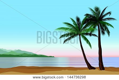 Palm tree on the ocean beach. Nature floral landscape Tropical beach resort skyline. Summer holidays background. Seaside Sunrise View Poster. Vector resort