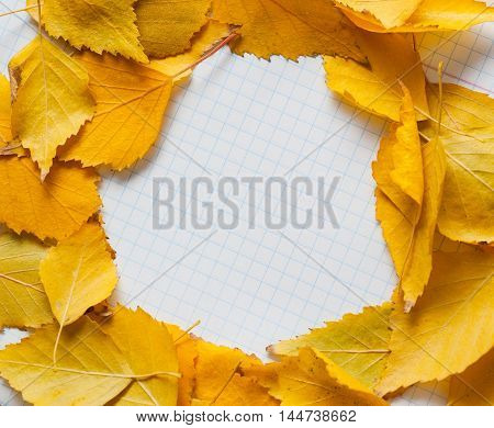 Autumn leaves in circle frame with place for your text isolated on white background