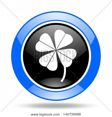 four-leaf clover round glossy blue and black web icon