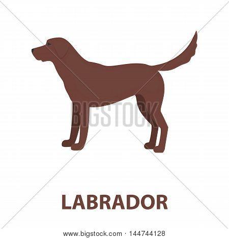 Labrador vector illustration icon in cartoon design