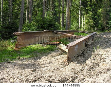 Part of the timber workers left after logging in the Carpathian forest