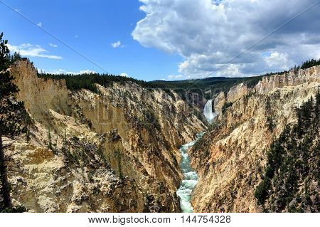 Vista shows the Grand Canyon of the Yellowstone in Yellowstone National Park. Steep canyon walls with yellow tint leads your eye to the Lower Falls in Yellowstone National Park.