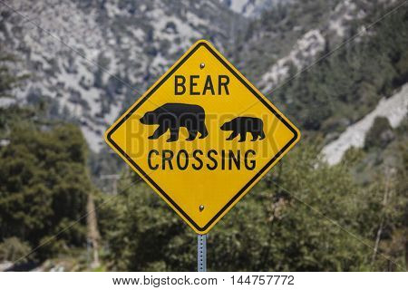 Bear Crossing highway sign with National Forest mountain background.