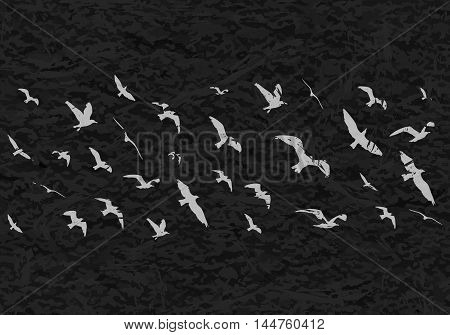 Flying Birds Silhouettes On Black Grunge Background. Vector Illustration