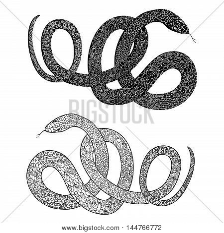 Snake set. Engraved hand drawn vector illustraction of ornamental decorated Swirl animal patterned line snakes.