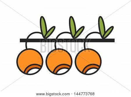 Flat colored linear icon. Berry and fruit object. Vector illustration
