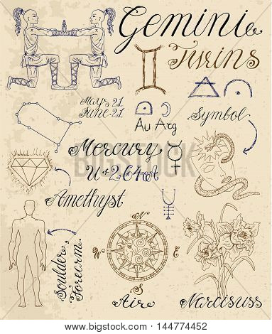 Collection of hand drawn symbols for astrological zodiac sign Gemini or Twins. Line art vector illustration of engraved horoscope set. Doodle drawing and sketch with calligraphic lettering