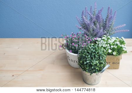 Wood floor with dwarf trees and colorful flower on the flower pot.