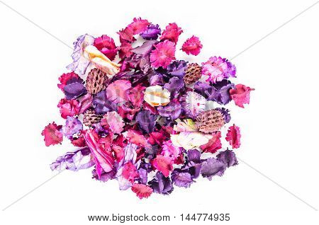 Scattered dried parts of plants and flower on white background.