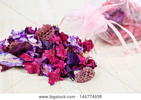 Scattered dried parts of plants and flower on fabric background.