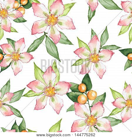 Blooming garden. Floral seamless pattern. Watercolor painting 12