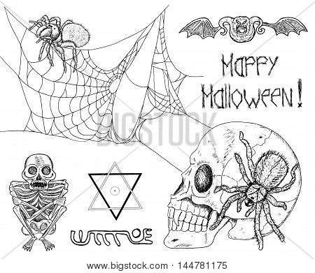 Black and white Halloween set with spiders, cobweb, pentacle, lettering, skull, skeleton and bones. Doodle line art illustration and graphic sketch, hand drawn vector with icons of tarantula and demon