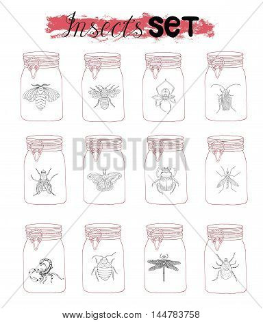 Hand drawn collection of various insects in glass jars. Doodle line art illustration and graphic sketch, black and white vector with icons, vintage entomologic set