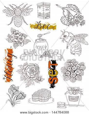 Hand drawn set with isolated bee, honey, honeycomb, honey pot and flowers. Doodle line art illustration and graphic sketch, black and white vector with hand drawn elements, vintage collection