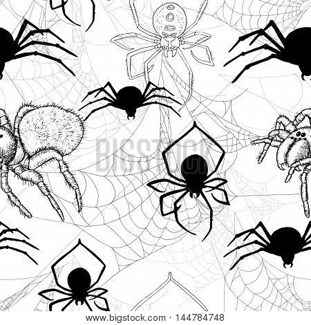 Seamless pattern with spiders and cobweb on white. Halloween background with scary silhouettes. Doodle illustration and hand drawn repeated background