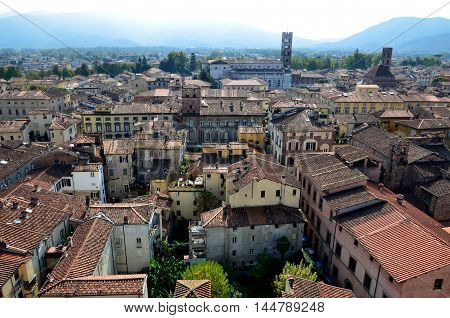 Lucca, Tuscany, Italy as seen from Tower Guinigi.Unesco site