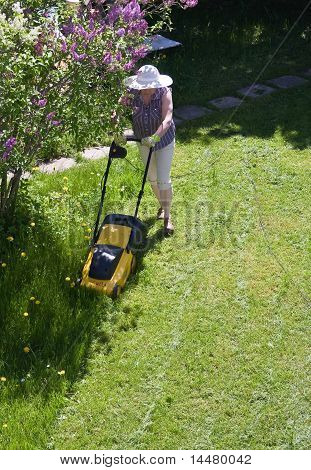 Woman And The Lawn mower