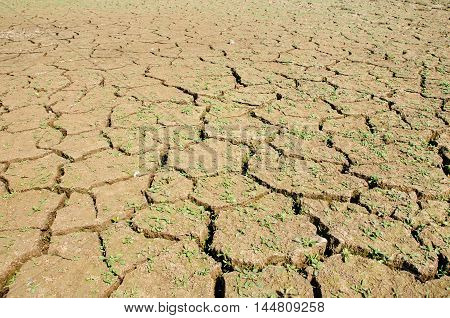 Drought, the ground cracks, no hot water, lack of moisture.