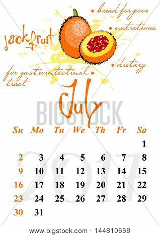 Calendar design grid with useful properties of fruits and dates of summer month July 2017. Jackfruit. Vector illustration