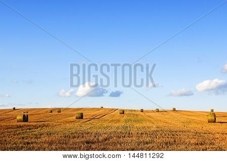 round strohblallen on a wide harvested stubble field against the blue sky with generous copy space