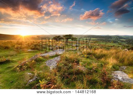 Sunset At Combestone Tor
