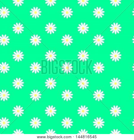 Seamless flower pattern. White daisies on a green background. Small cute simple spring flowers. Turquoise background. Gift Wrap. Marguerite.