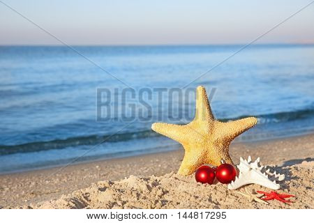 Sea stars with toys on beach. Christmas holiday concept
