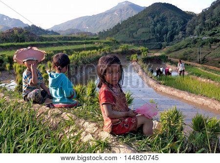 YEN BAI, VIETNAM, May 23, 2016 Hmong farmers, Mu Cang Chai high mountains, Yen Bai province, season rice