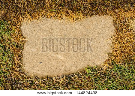 green grass frame and old concrete background