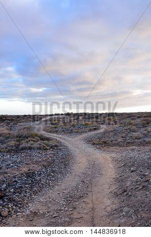 Dirt Road Desert