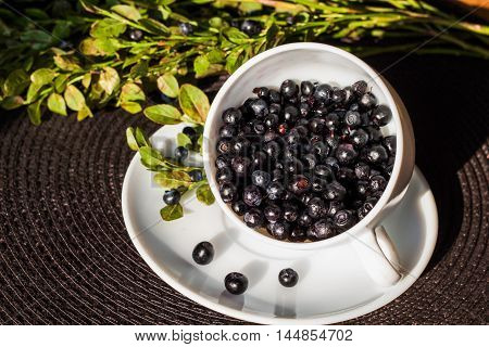 Whortleberry in a white cup on a saucer