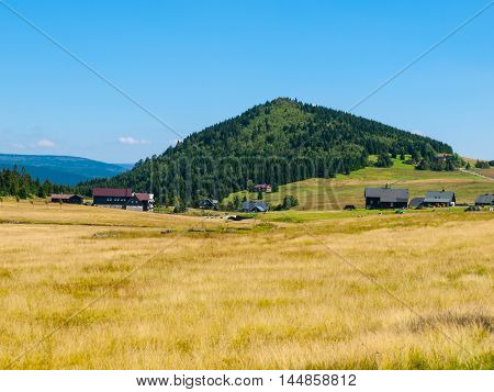 Green forested conical hill, bright yellow summer grass and clear blue sky in Jizera Mountains, Jizerka village and Bukovec Mountain, Czech Republic