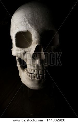 Terrifying realistic halloween skull for October holiday background