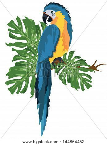 Colorful blue parrot on a palm tree branch Vector