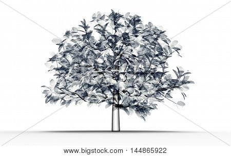 X-ray Image Of A Tree Isolated On White