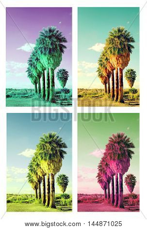 Pop art palm trees collage cross processed to look like pop art