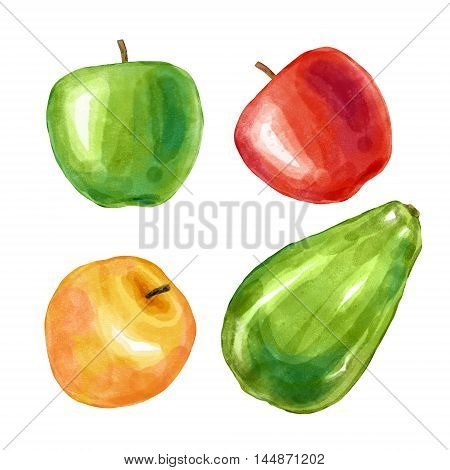 Watercolor fruits apple avocado. Big collection of hand drawn illustrations. Good for book illustration, magazine or journal article.