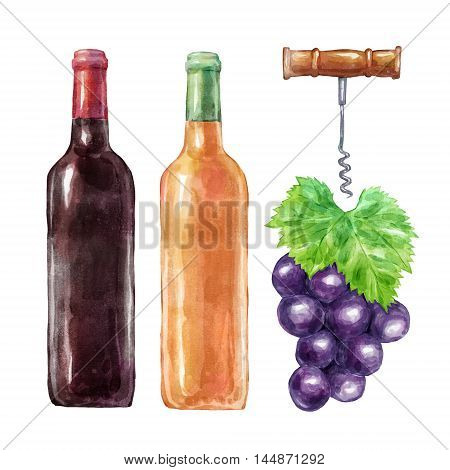 Watercolorwine set with grape and corkscrew. Big collection of hand drawn illustrations. Good for book illustration, magazine or journal article.